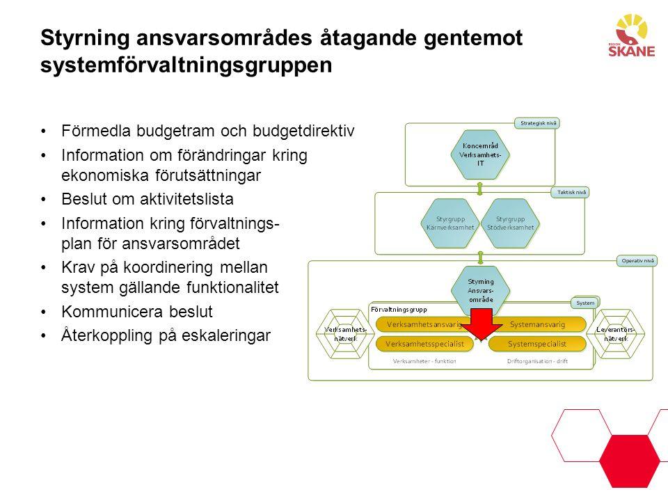Styrning ansvarsområdes åtagande gentemot systemförvaltningsgruppen