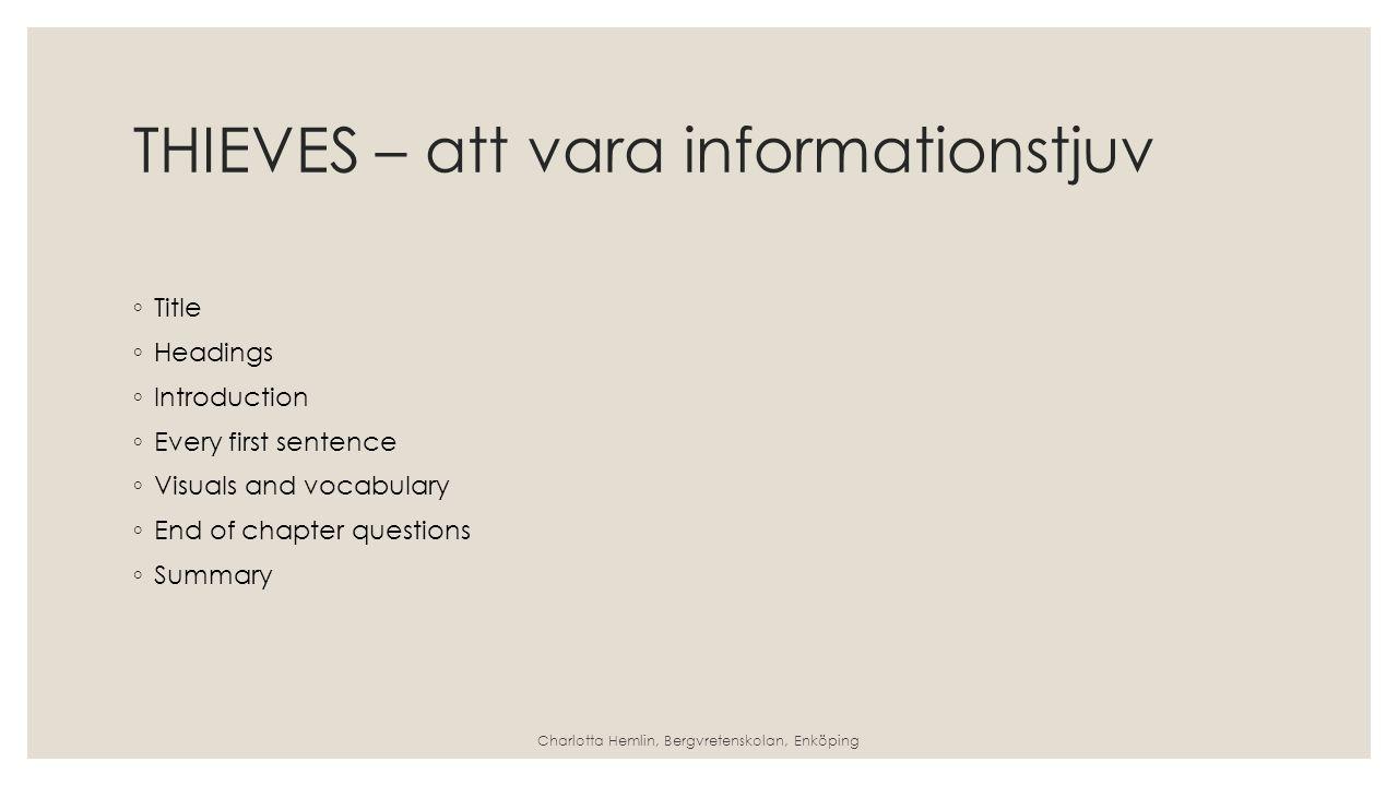 THIEVES – att vara informationstjuv