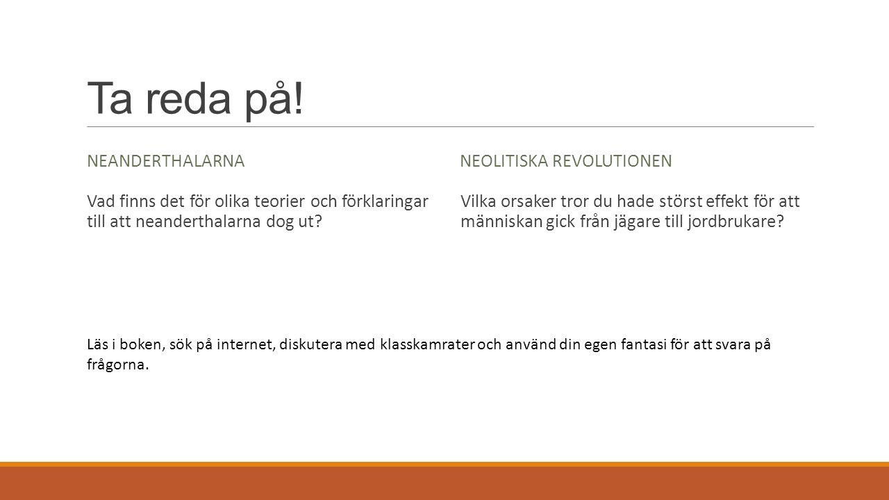 Ta reda på! Neanderthalarna Neolitiska revolutionen
