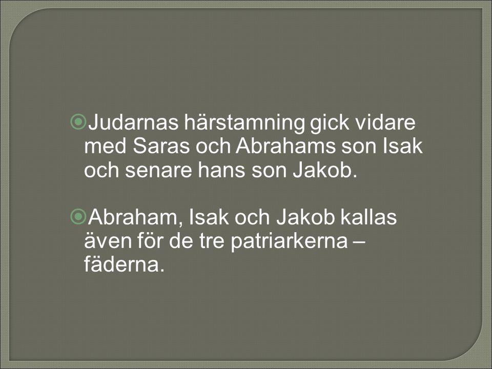 Judarnas härstamning gick vidare med Saras och Abrahams son Isak och senare hans son Jakob.