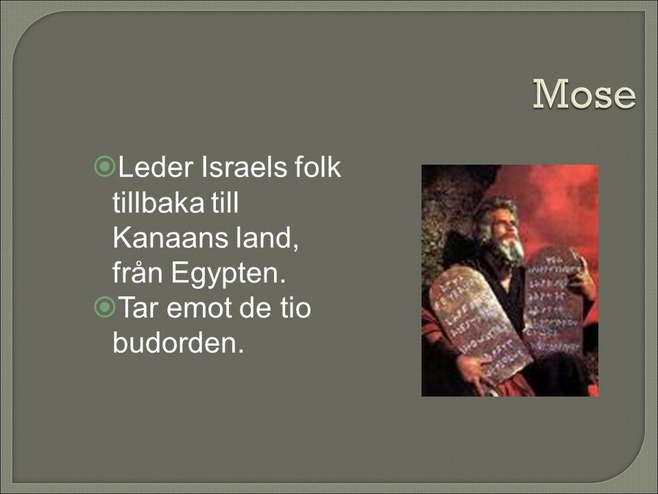 Leder Israels folk tillbaka till Kanaans land, från Egypten.