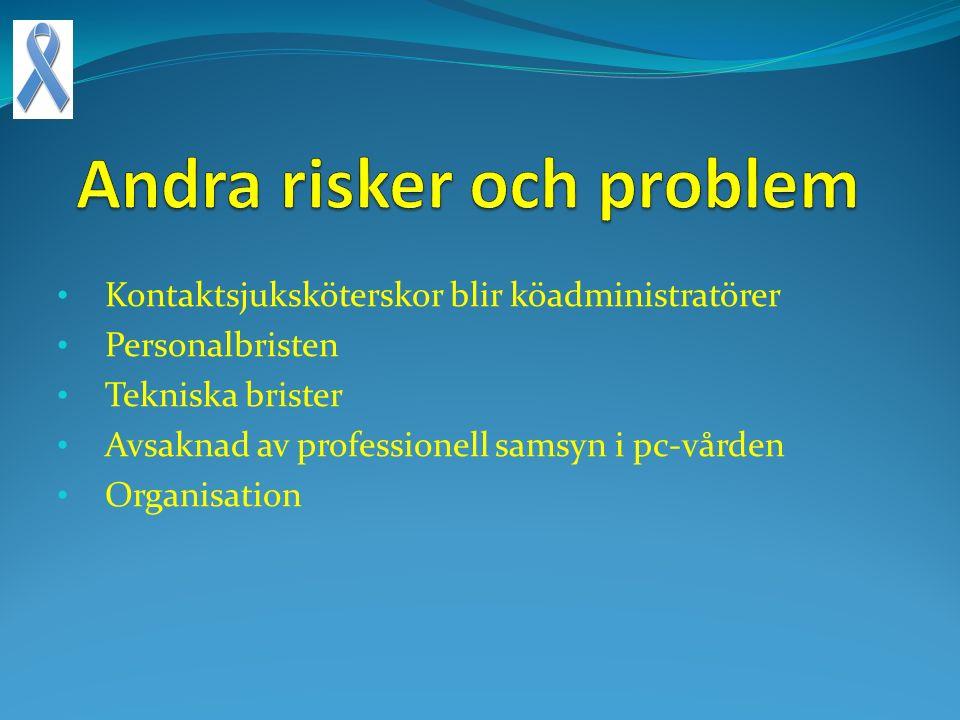 Andra risker och problem