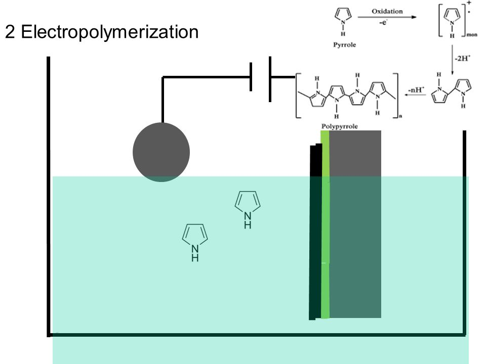 2 Electropolymerization