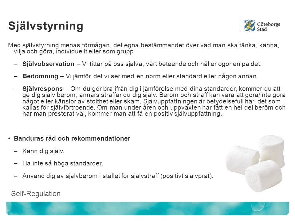 Självstyrning Self-Regulation