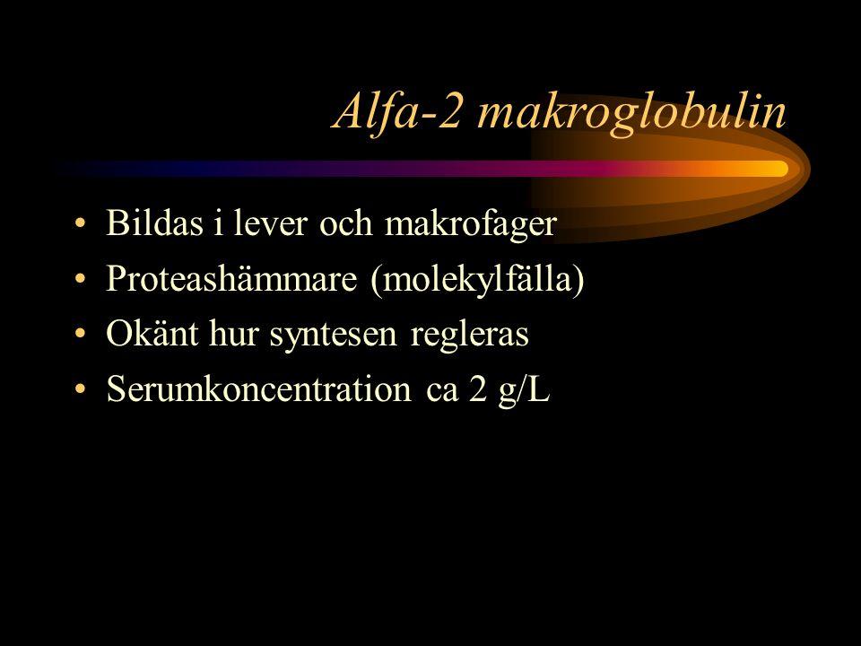 Alfa-2 makroglobulin Bildas i lever och makrofager