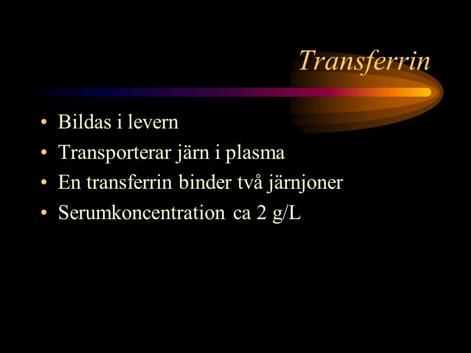 Transferrin Bildas i levern Transporterar järn i plasma