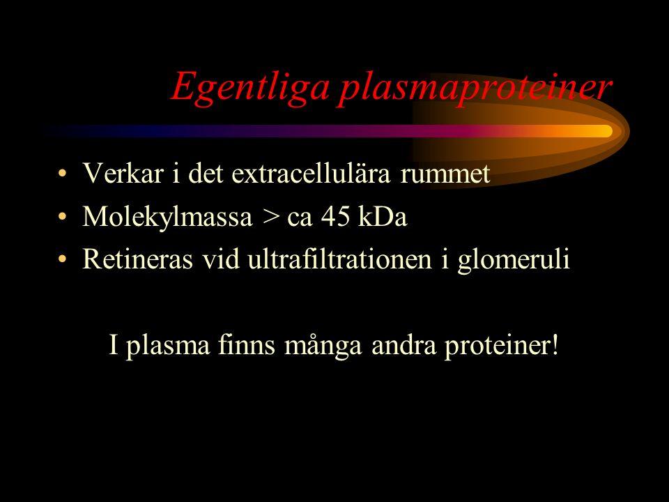 Egentliga plasmaproteiner