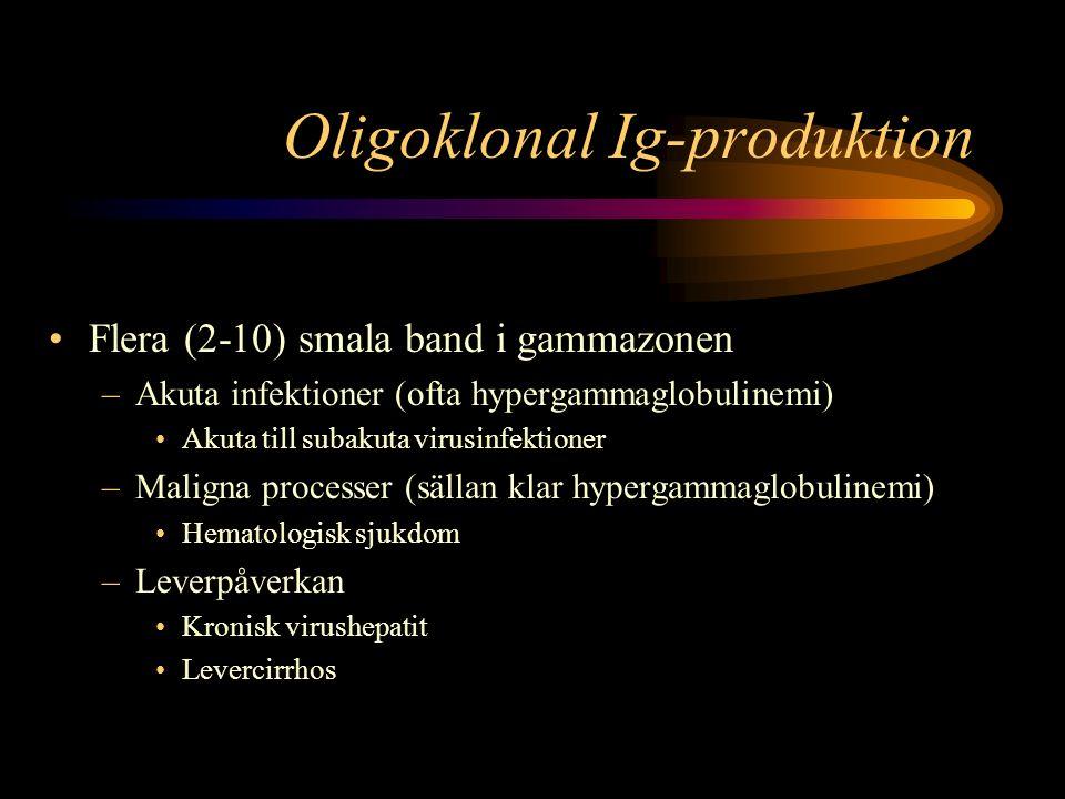 Oligoklonal Ig-produktion