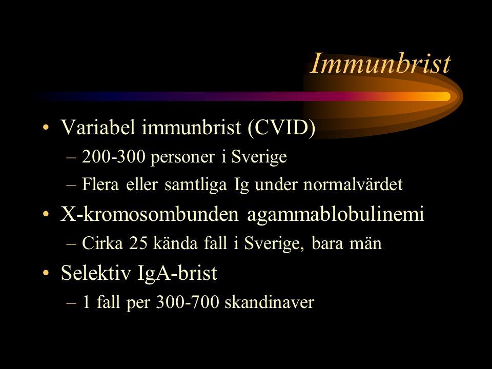 Immunbrist Variabel immunbrist (CVID)