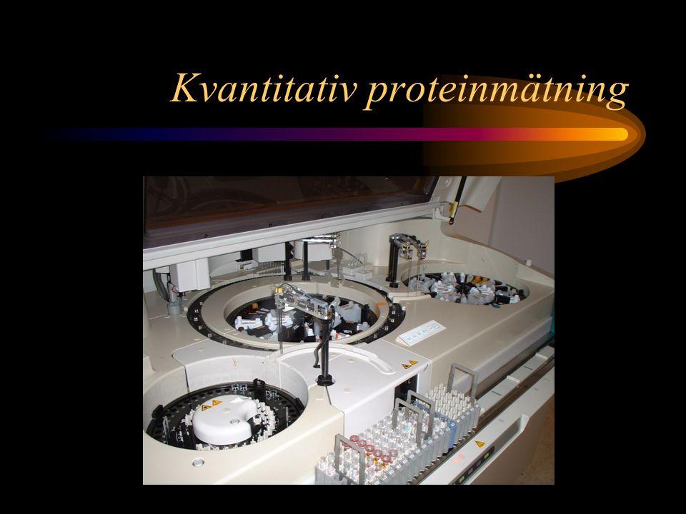 Kvantitativ proteinmätning