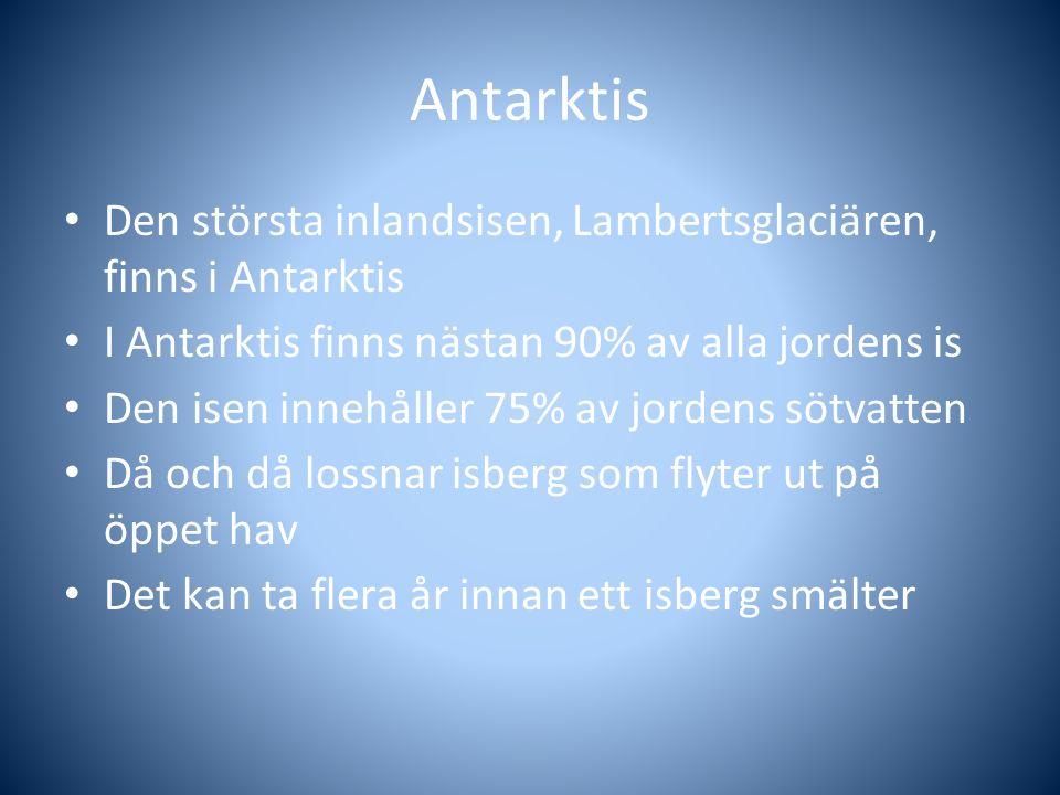 Antarktis Den största inlandsisen, Lambertsglaciären, finns i Antarktis. I Antarktis finns nästan 90% av alla jordens is.