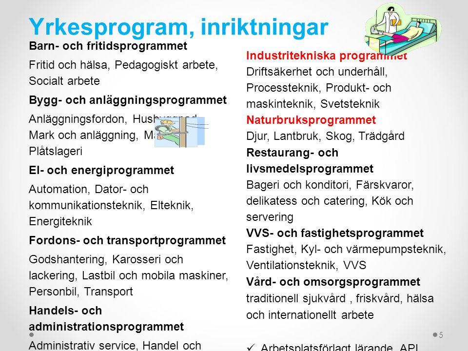 Yrkesprogram, inriktningar