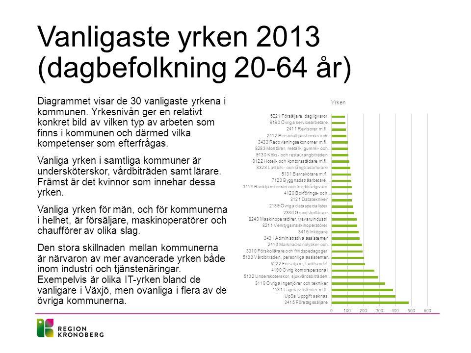 Vanligaste yrken 2013 (dagbefolkning 20-64 år)