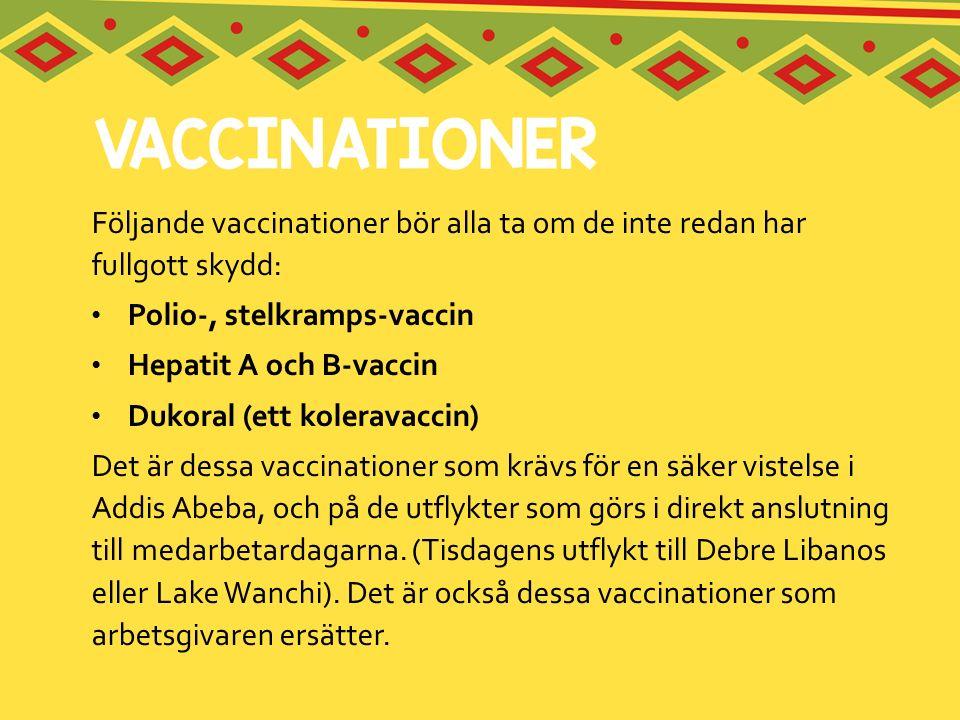 Följande vaccinationer bör alla ta om de inte redan har fullgott skydd: