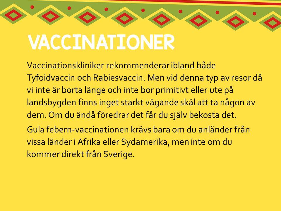 Vaccinationskliniker rekommenderar ibland både Tyfoidvaccin och Rabiesvaccin. Men vid denna typ av resor då vi inte är borta länge och inte bor primitivt eller ute på landsbygden finns inget starkt vägande skäl att ta någon av dem. Om du ändå föredrar det får du själv bekosta det.