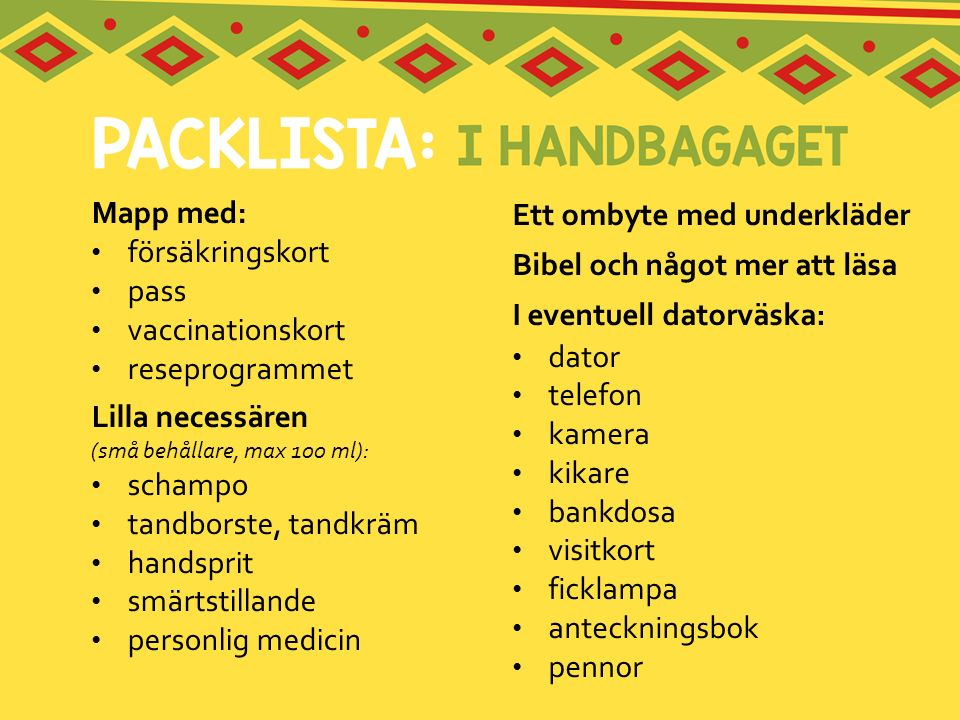Mapp med: försäkringskort. pass. vaccinationskort. reseprogrammet. Lilla necessären (små behållare, max 100 ml):