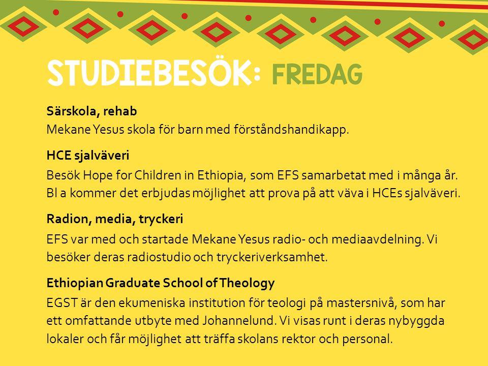 Särskola, rehab Mekane Yesus skola för barn med förståndshandikapp.