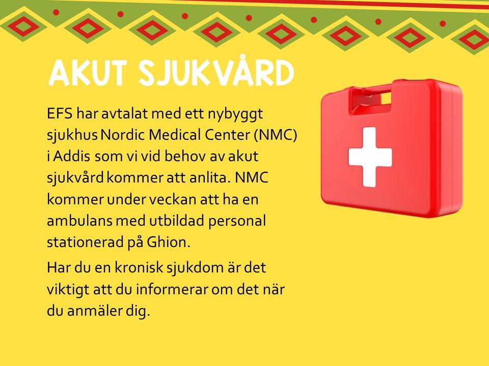 EFS har avtalat med ett nybyggt sjukhus Nordic Medical Center (NMC) i Addis som vi vid behov av akut sjukvård kommer att anlita. NMC kommer under veckan att ha en ambulans med utbildad personal stationerad på Ghion.