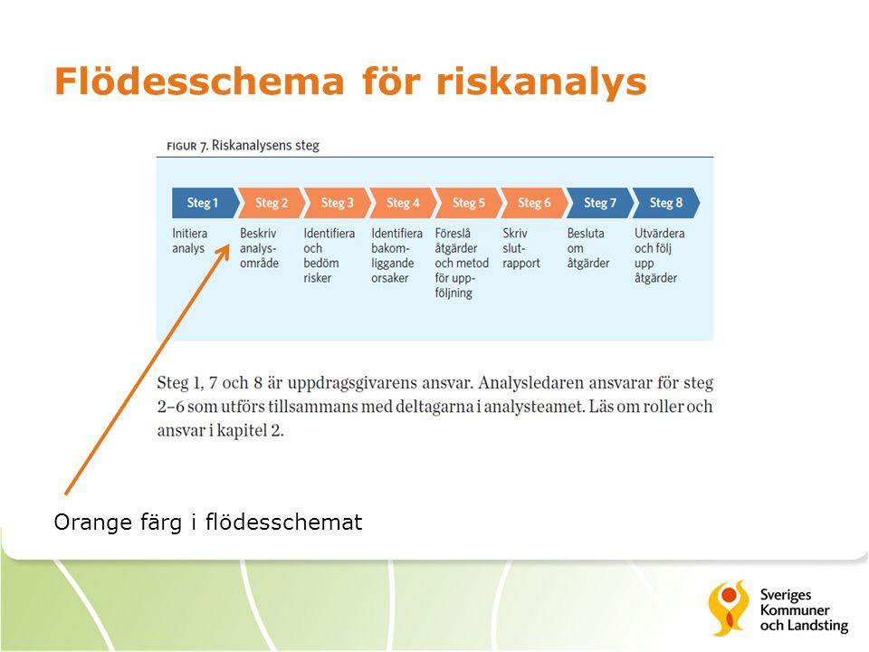 Flödesschema för riskanalys