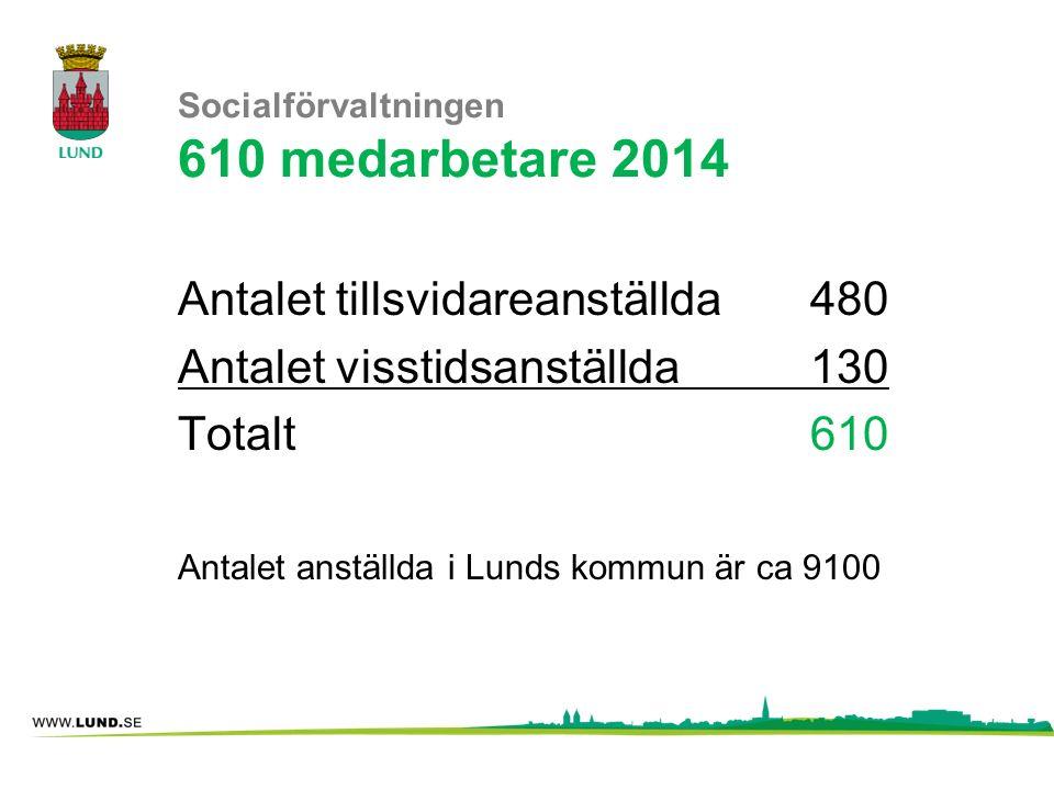 Socialförvaltningen 610 medarbetare 2014
