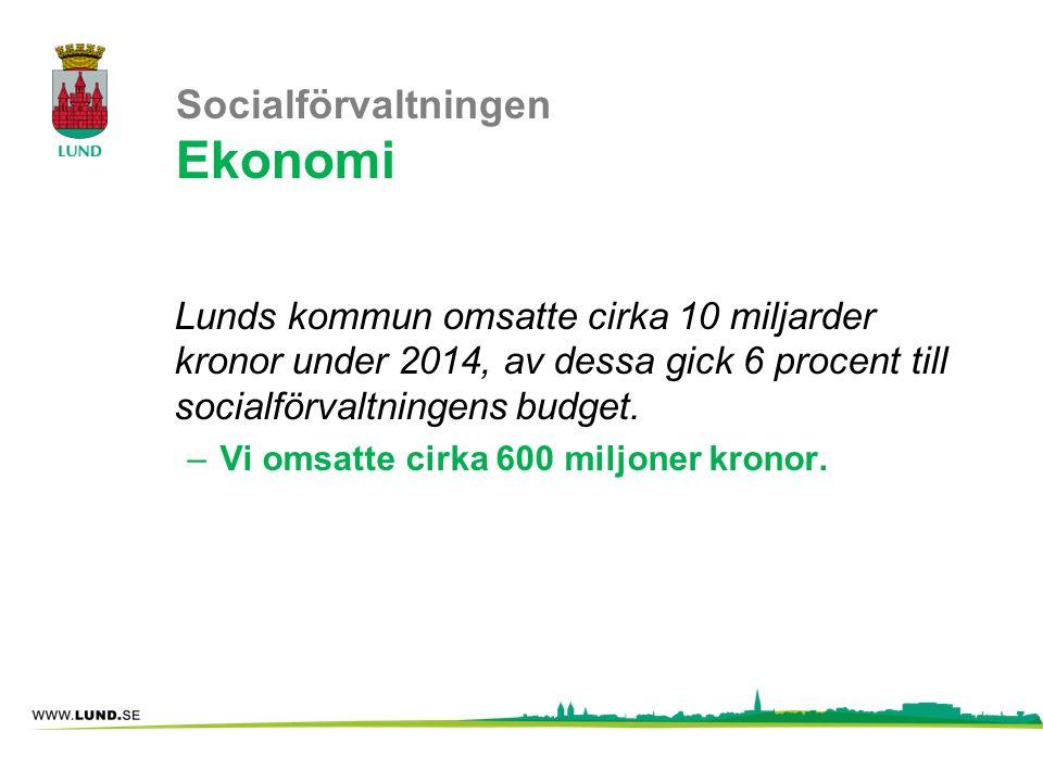 Socialförvaltningen Ekonomi