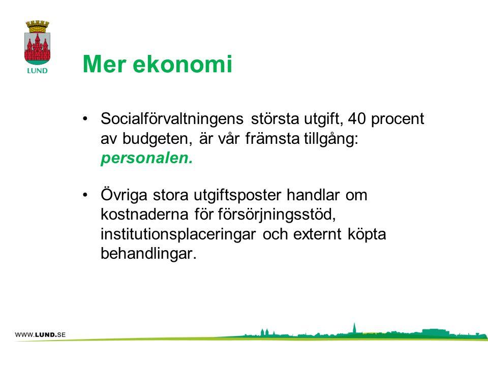 Mer ekonomi Socialförvaltningens största utgift, 40 procent av budgeten, är vår främsta tillgång: personalen.