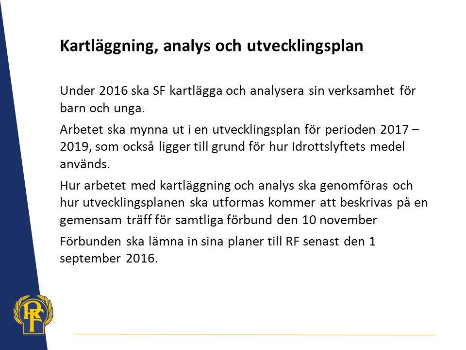 Kartläggning, analys och utvecklingsplan
