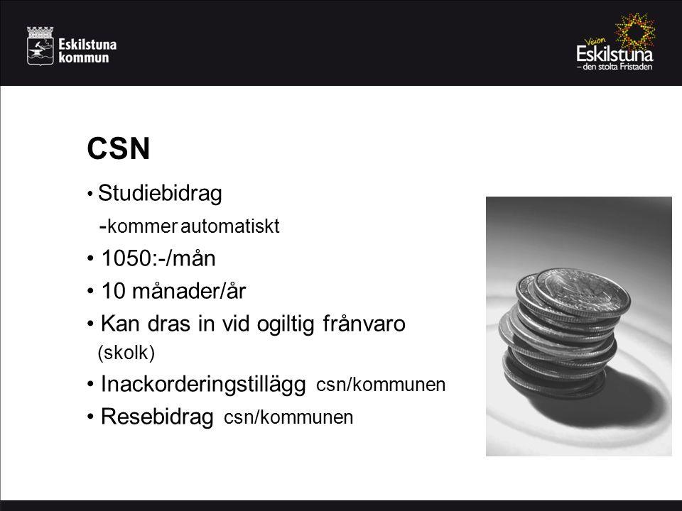 CSN -kommer automatiskt 1050:-/mån 10 månader/år