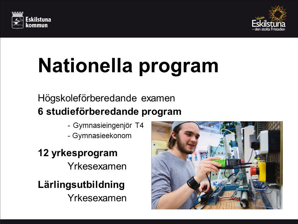 Nationella program Högskoleförberedande examen