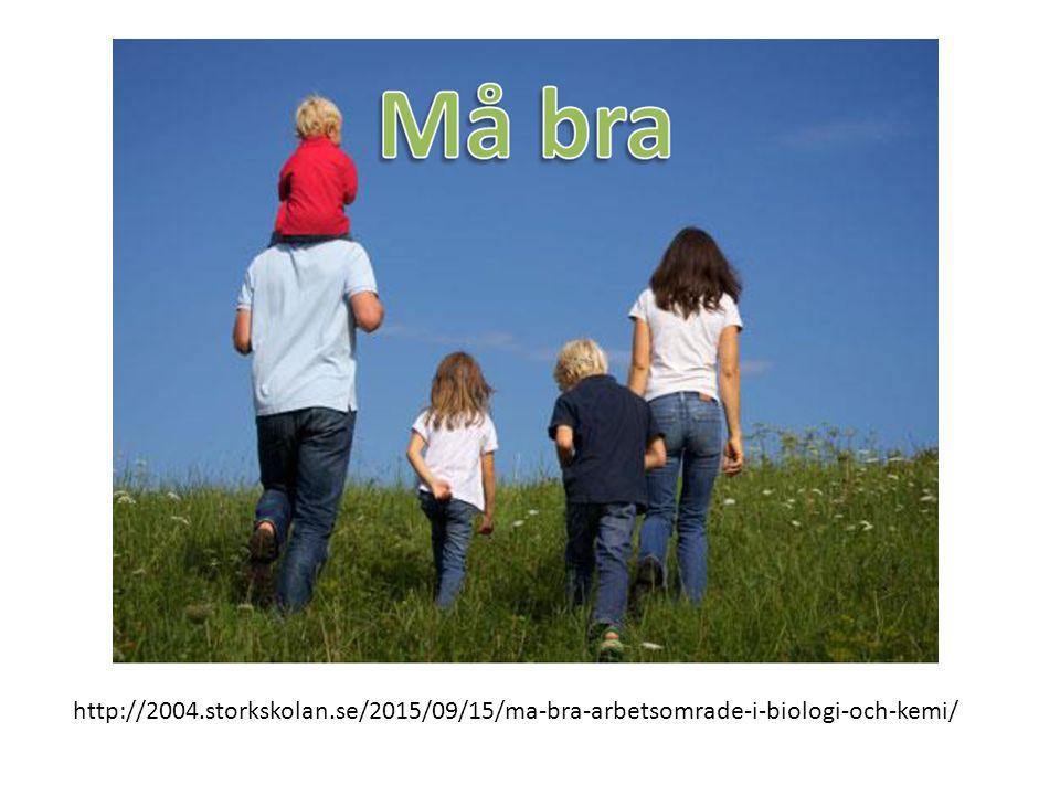 http://2004.storkskolan.se/2015/09/15/ma-bra-arbetsomrade-i-biologi-och-kemi/