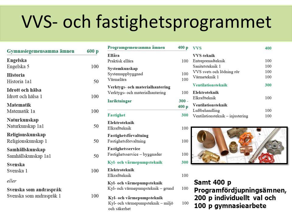 VVS- och fastighetsprogrammet