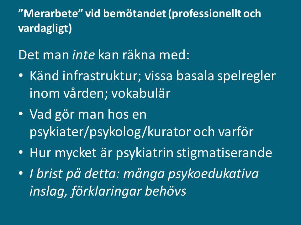 Merarbete vid bemötandet (professionellt och vardagligt)