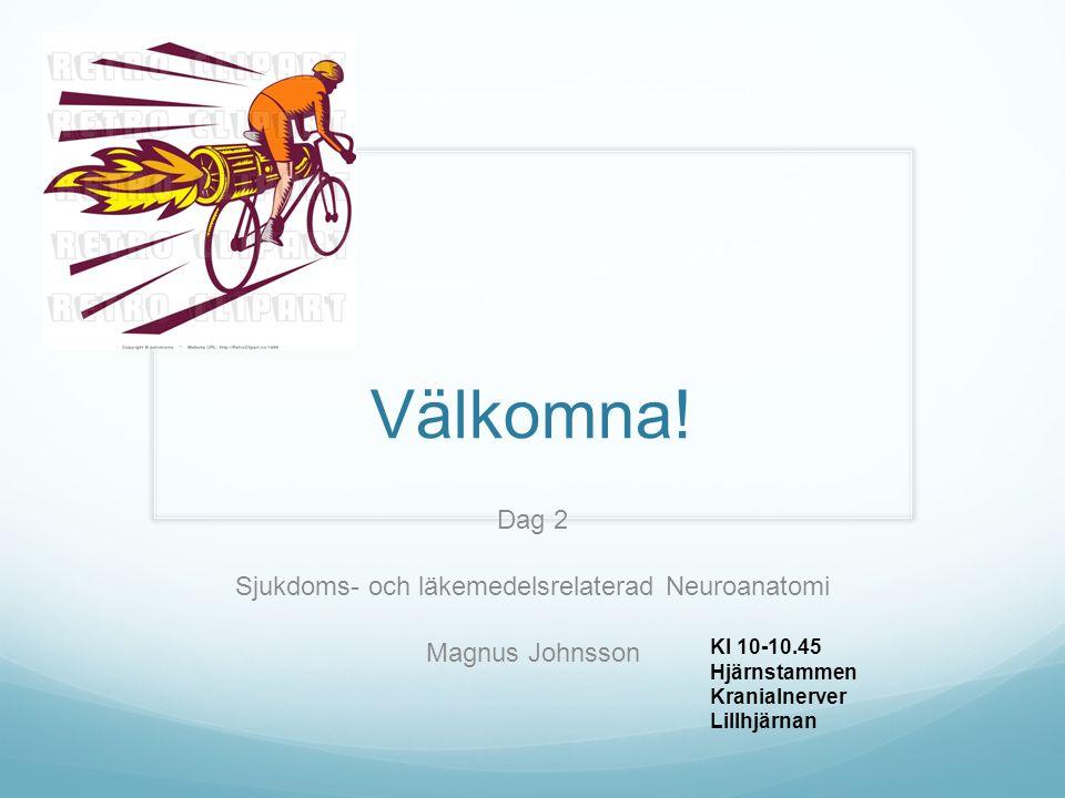 Dag 2 Sjukdoms- och läkemedelsrelaterad Neuroanatomi Magnus Johnsson