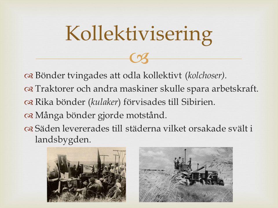 Kollektivisering Bönder tvingades att odla kollektivt (kolchoser).