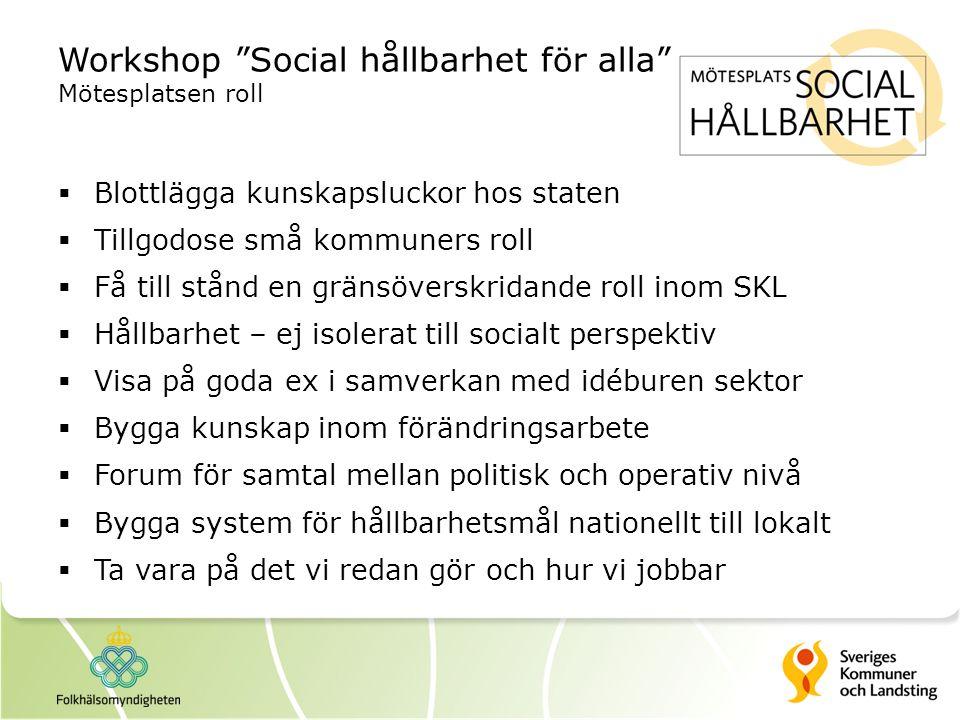 Workshop Social hållbarhet för alla Mötesplatsen roll