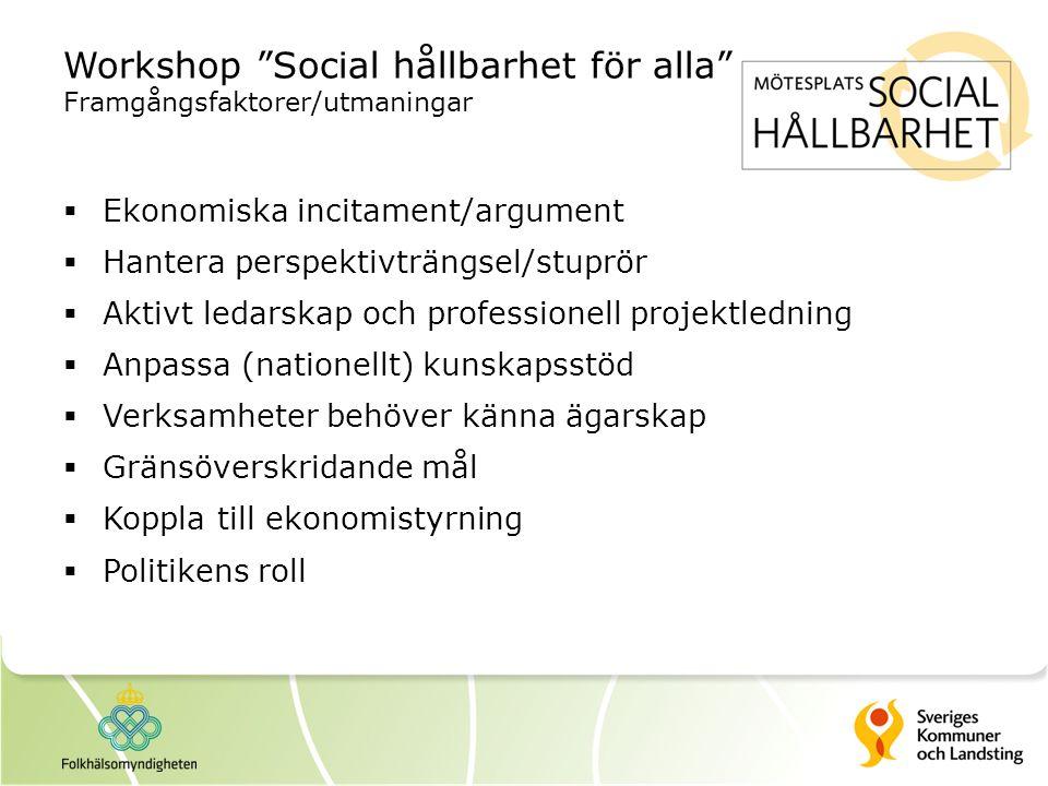 Workshop Social hållbarhet för alla Framgångsfaktorer/utmaningar
