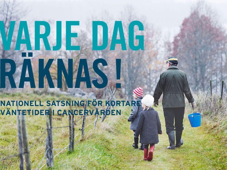 Omkring 60 000 personer i Sverige kommer att få cancer nästa år