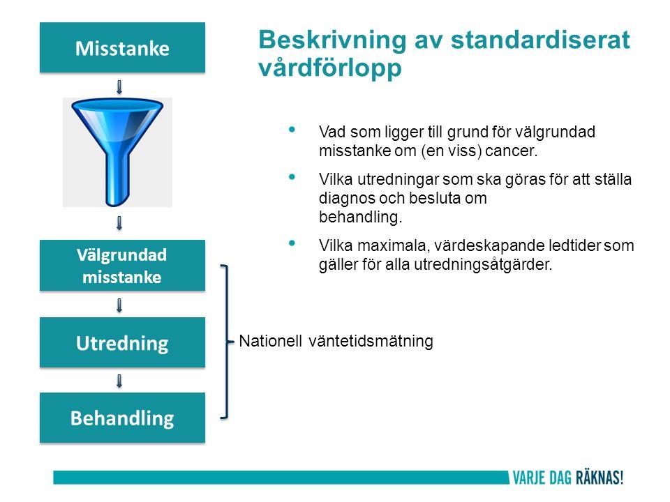 Beskrivning av standardiserat vårdförlopp