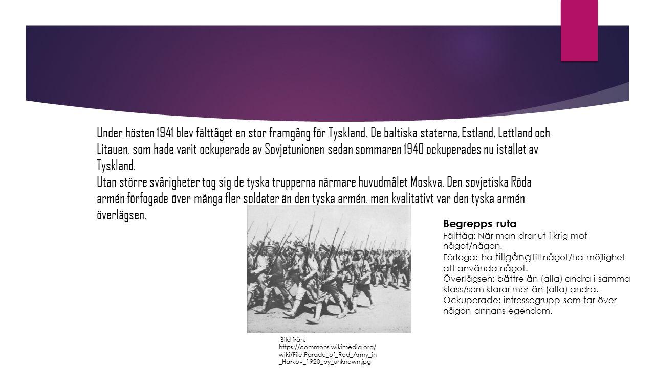 Under hösten 1941 blev fälttåget en stor framgång för Tyskland