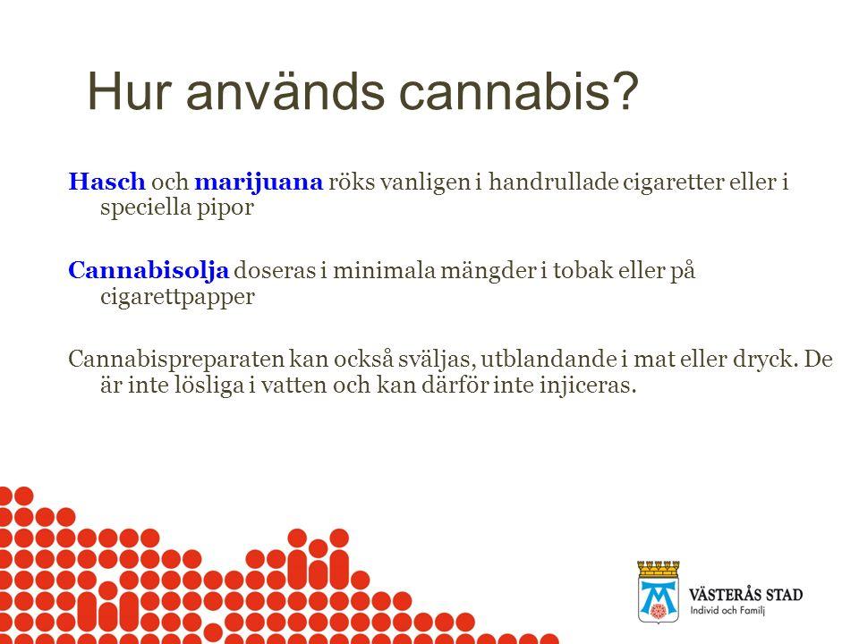 Hur används cannabis Hasch och marijuana röks vanligen i handrullade cigaretter eller i speciella pipor.