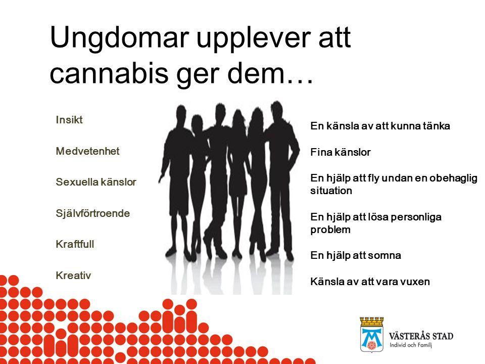 Ungdomar upplever att cannabis ger dem…