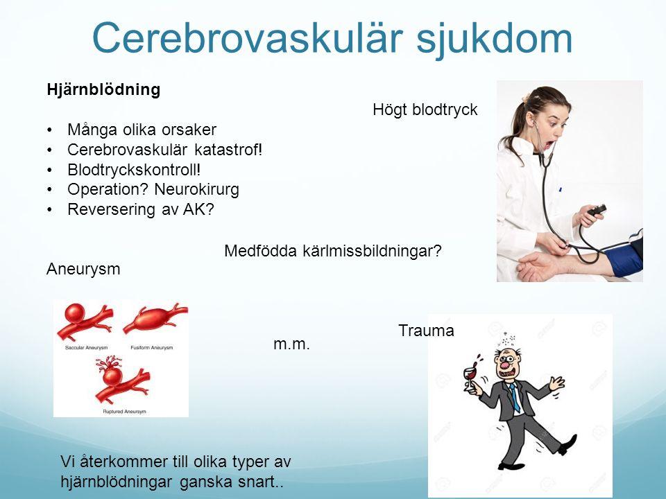 Cerebrovaskulär sjukdom