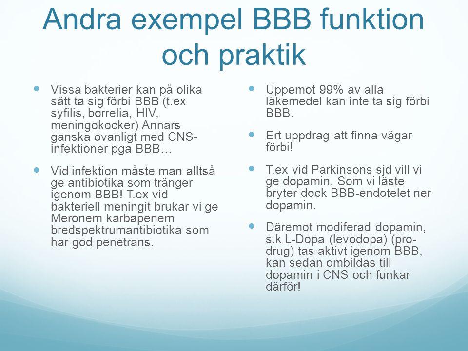 Andra exempel BBB funktion och praktik