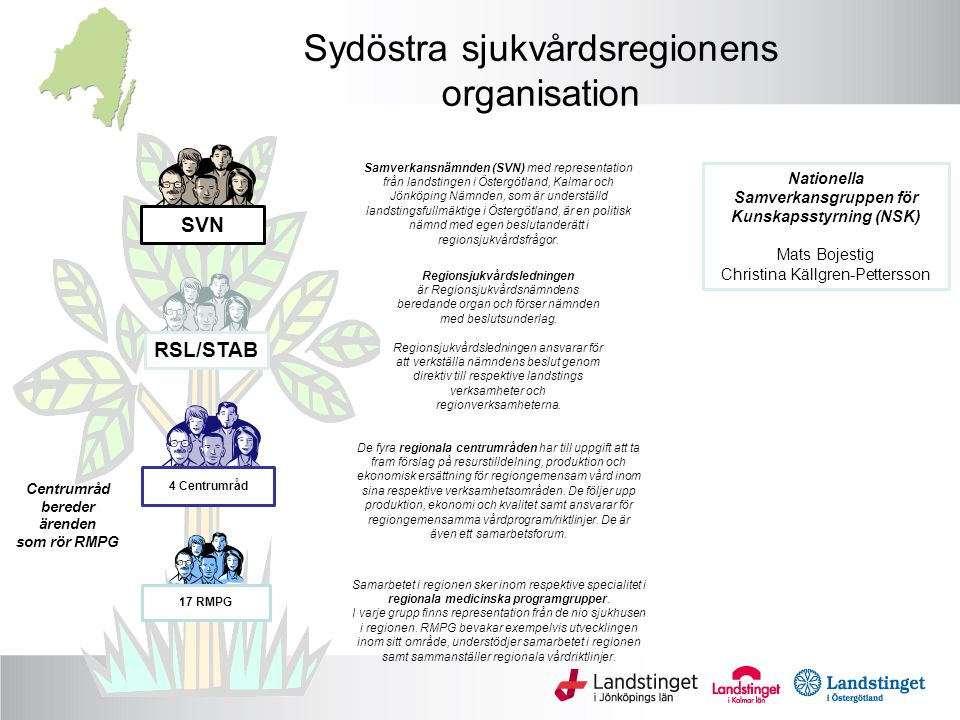 Sydöstra sjukvårdsregionens organisation