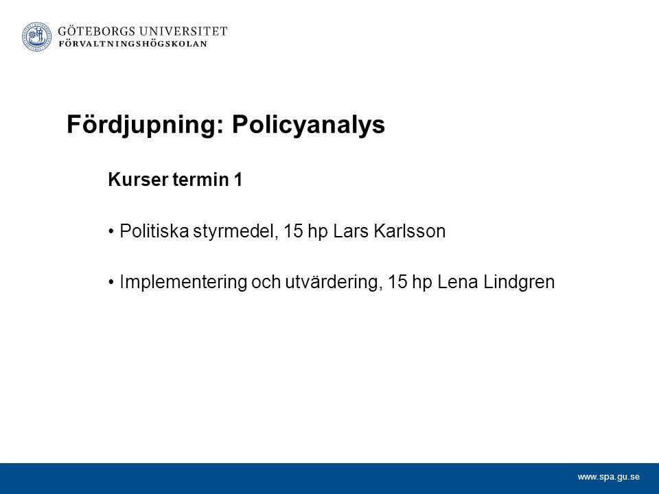 Fördjupning: Policyanalys