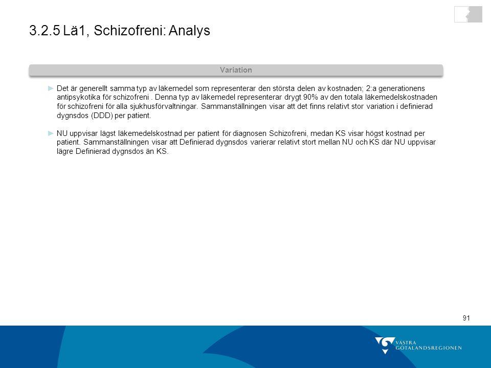 3.2.5 Lä1, Schizofreni: Analys