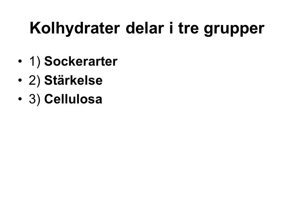 Kolhydrater delar i tre grupper