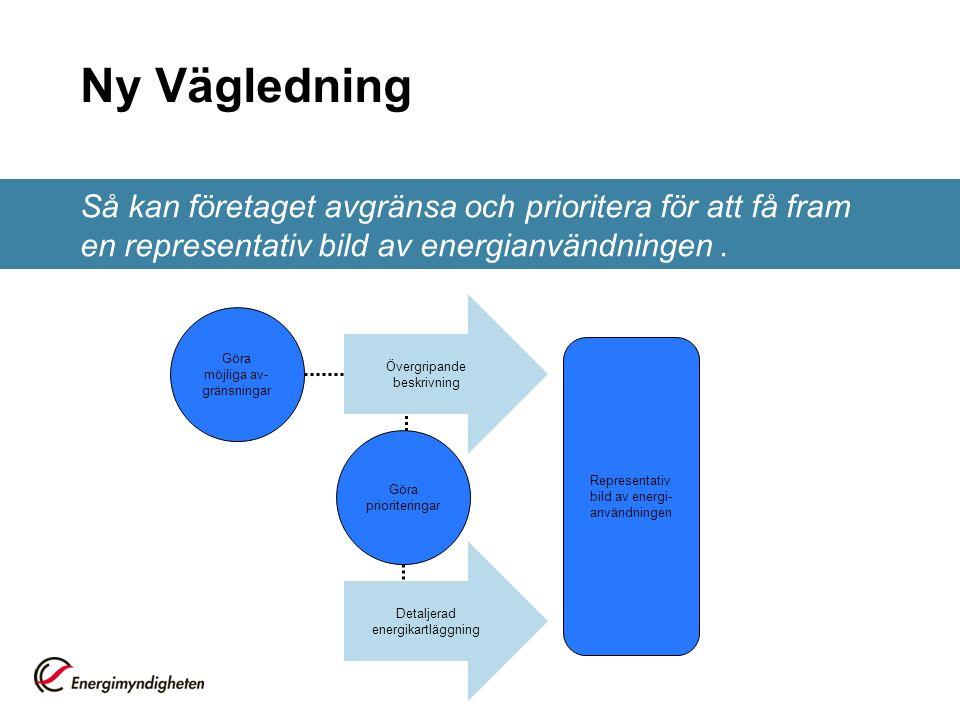 Ny Vägledning Så kan företaget avgränsa och prioritera för att få fram en representativ bild av energianvändningen .