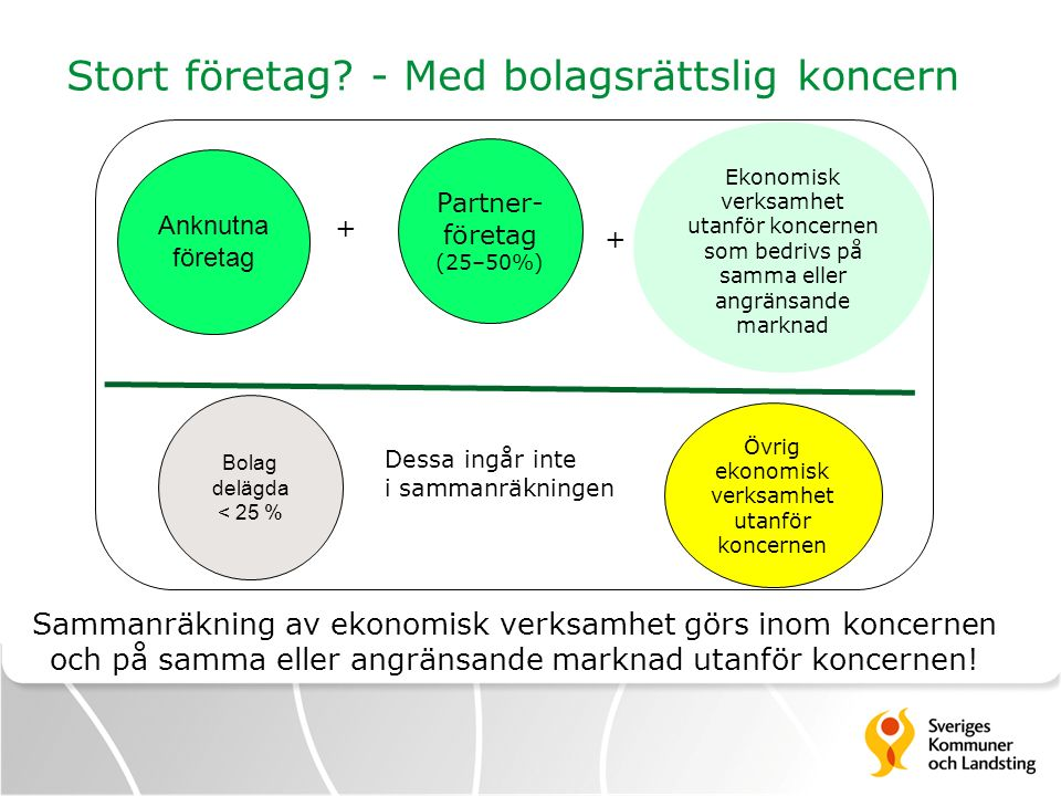 Stort företag - Med bolagsrättslig koncern