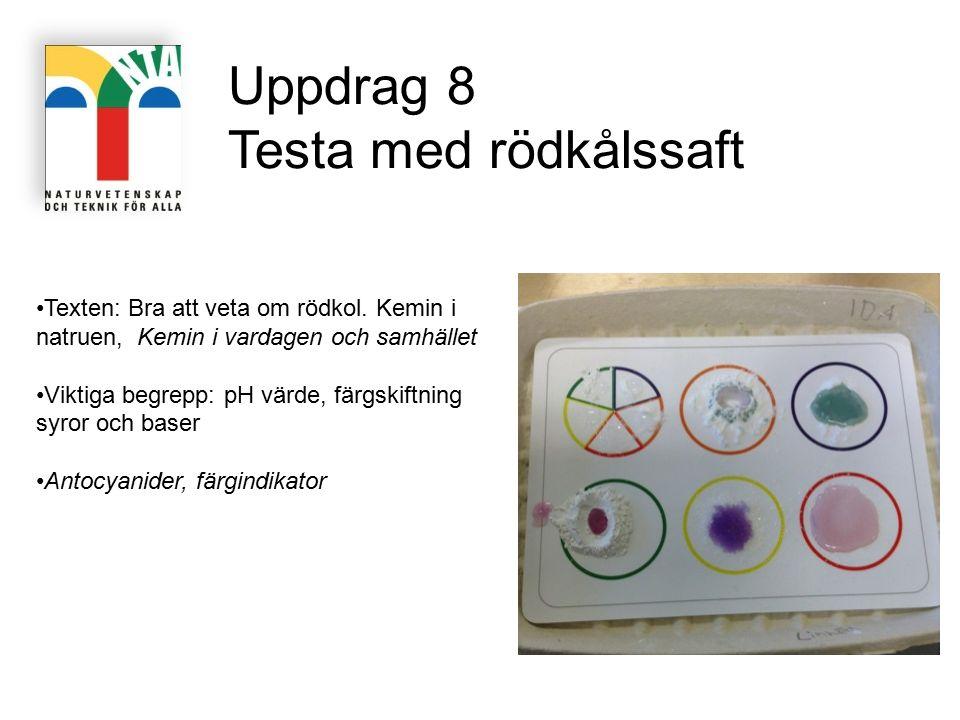 Uppdrag 8 Testa med rödkålssaft